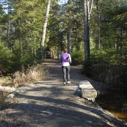 Bangor-area regional trail system, 'Heart of Penobscot,' seeking public involvement