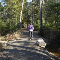 Bangor-area regional trail system, 'Heart of Penobscot,' seeking public involvement