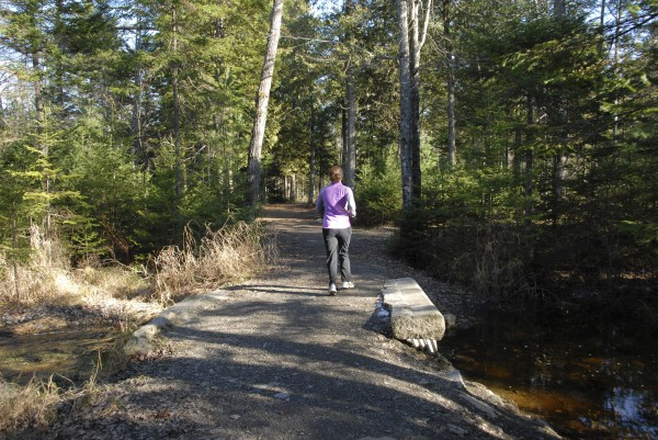 A jogger crosses the Bog Brook bridge in Bangor City Forest while running along East Trail on a mid-November afternoon. Photo taken on Nov. 10, 2012.