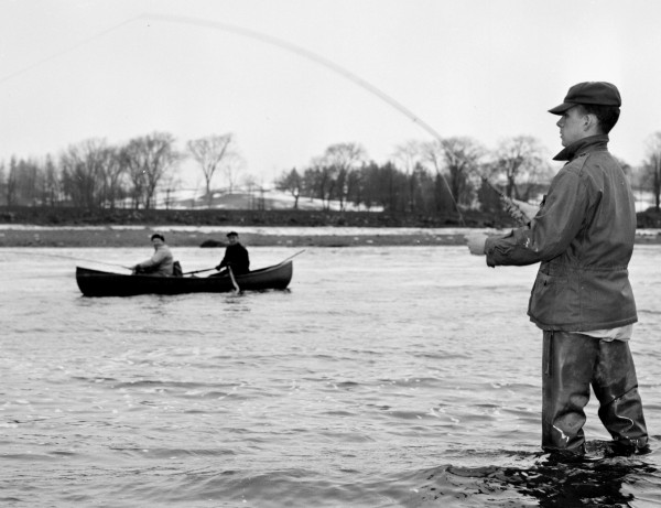 Tom Hennessey of Bangor tries his luck at the Bangor Salmon Pool on the opening day of fishing Friday while Dr. Frank Gilley and well-known salmon angler Guy Carroll cast from a boat. There were no reports of any salmon taken during the day's fishing.