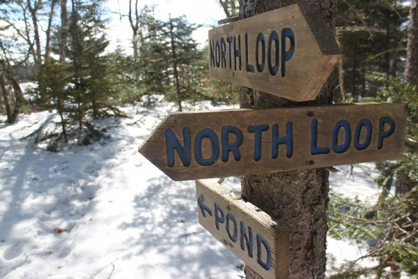 Several wooden signs guide hikers through the trail network of Kingdom Woods Conservation Area on Feb. 22, 2013, in Blue Hill. The trails form three loops.
