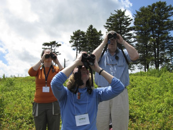Birders train their eyes on the skies at the Big Sit Birding Circle on Beech Hill in Rockport in May 2009. Watching the birds, are (from left) Ava Goodale of the Coastal Mountains Land Trust, Kristen Lindquist of the Coastal Mountains Land Trust and James Lea of Rockport.