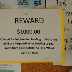 Beals Lobster Inc. of Jonesport is offering a $1,000 reward for information that results in the arrest of anyone involved in the theft of as many as 100 empty lobster crates from its wharf over the weekend.