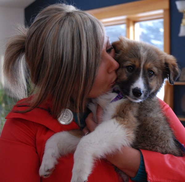 Anna Cannan holds Grizzly, who just 48 hours prior had a very uncertain future. But thanks to Cannan's Puppy Rescue Mission, Grizzly was transported from a war zone in Afghanistan to Fort Kent, arriving Friday afternoon.