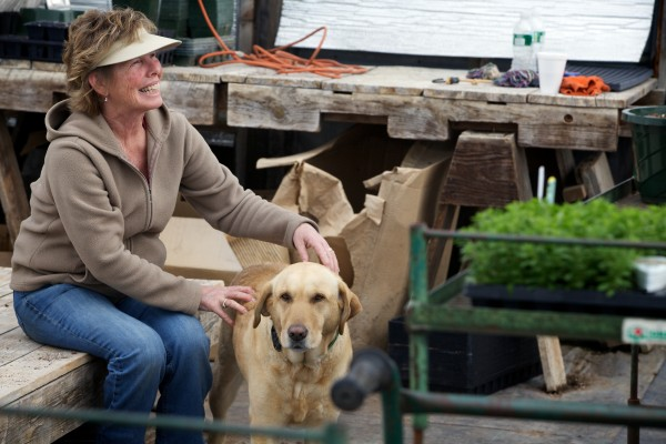 Susan Richards gives her dog Molly a rub at the Frugal Farmers greenhouses Wednesday in Buxton.