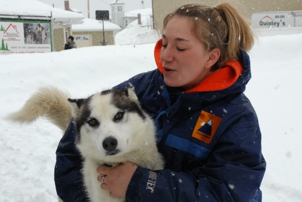 Can-Am Crown International Crown 250-mile sled dog racer Kasey McCarty of Lexington spends a few moments with one of her dogs before harnessing her team and taking off down Fort Kent's Main Street at the race start Saturday morning.