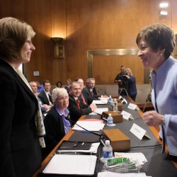 Senator Susan Collins greets Kim Nichols of Hermon prior to a Senate hearing in Washington, D.C. on Wednesday, March 13, 2013.