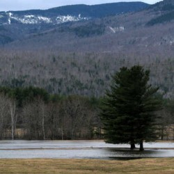 Melting snow from above-normal temperatures Friday and rain through Saturday morning caused minor flooding in Andover as the Ellis River overflowed its banks.
