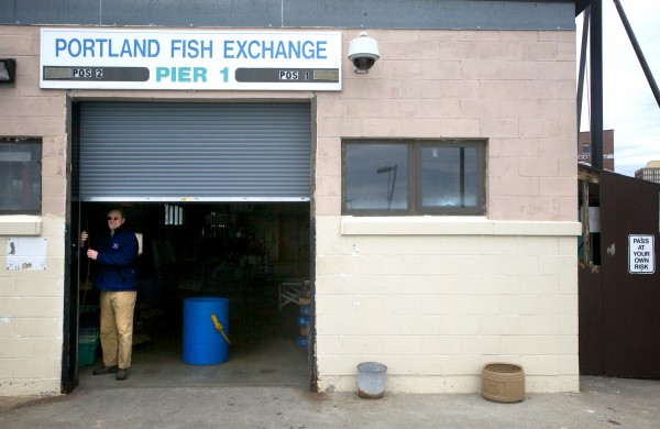 Bert Jongerden, general manager of the Portland Fish Exchange, shuts a door on Pier 1 on Thursday. Jongerden said groundfish landings in Maine likely would increase by 15 million pounds, from 5 million to around 20 million, if groundfishermen were allowed to sell lobster caught in their nets in Maine.