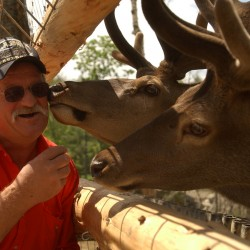 Smuggling brings down Texas deer breeders
