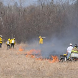 Brush fire burns 7 acres in Bradford; fire danger statewide is high
