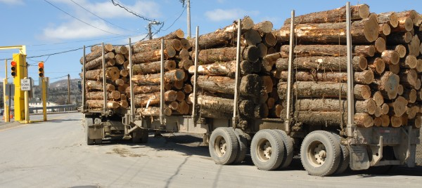 A Maine company-owned logging truck waits to enter the international bridge between Fort Kent and Clair, New Brunswick, last week. Canadian border officials have been turning some vehicles back into the United States if they deem them too dirty. Mud and soil on cars and trucks can carry unwanted pests and diseases into the country, Canadian officials said. This truck was allowed to enter the country after a brief inspection.