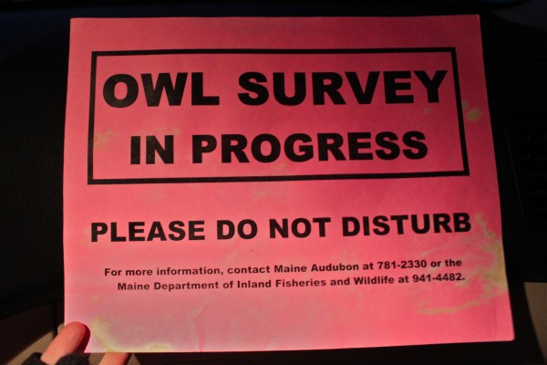 Corelyn Senn places a sign on the dashboard of her vehicle before starting her annual owl monitoring expedition for the Maine Owl Monitoring Project.