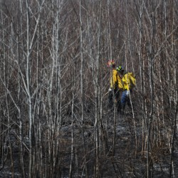 In Focus: Maine Maritime Academy, murder and brush fire