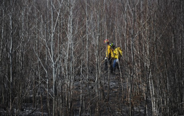 Forest rangers and firefighters walk through a section of woods looking for hot spots after gaining control over a 7-acre grass and woodlands fire in Bradford on Monday.