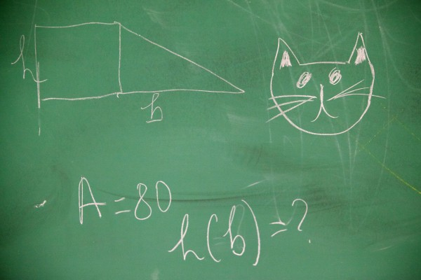 Geometry and a picture of Simba the cat adorn the chalk board in Tina Soucy's math class at Westbrook High School Thursday.