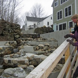 Restoration efforts put spotlight on once plentiful alewives
