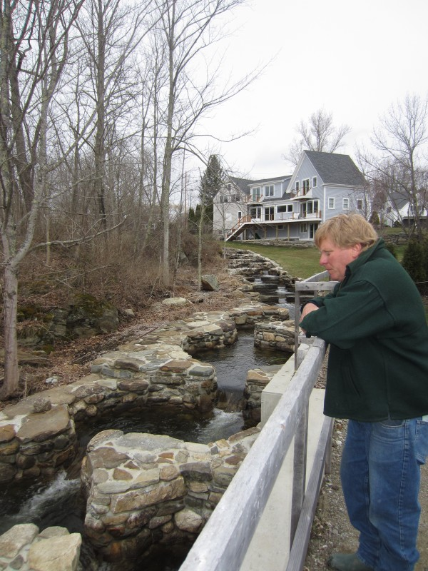 The restored Damariscotta Mills fish ladder, while not yet complete, already boasts 61 completed stone pools, Mark Becker said. Fourteen remain to be constructed beginning in November, after the alewives have gone for the winter.
