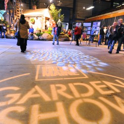 Bangor Garden Show returns with a new look