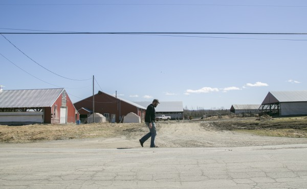 Brian Charles walks down Range Road past a dairy farm in Atkinson on Tuesday, April 17, 2013. The town of roughly 300 residents is attempting to deorganize.