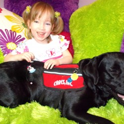 Mainers donate $15,000 to fund girl's service dog