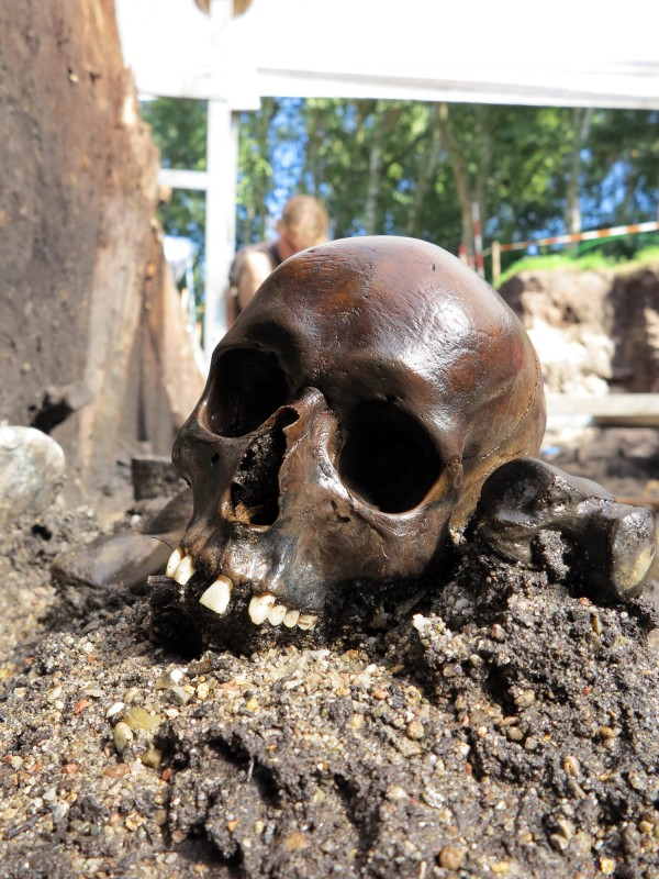 Among the remains found at an archaeological site in what is now Aiken, Denmark is a skull from early Roman Empire times.