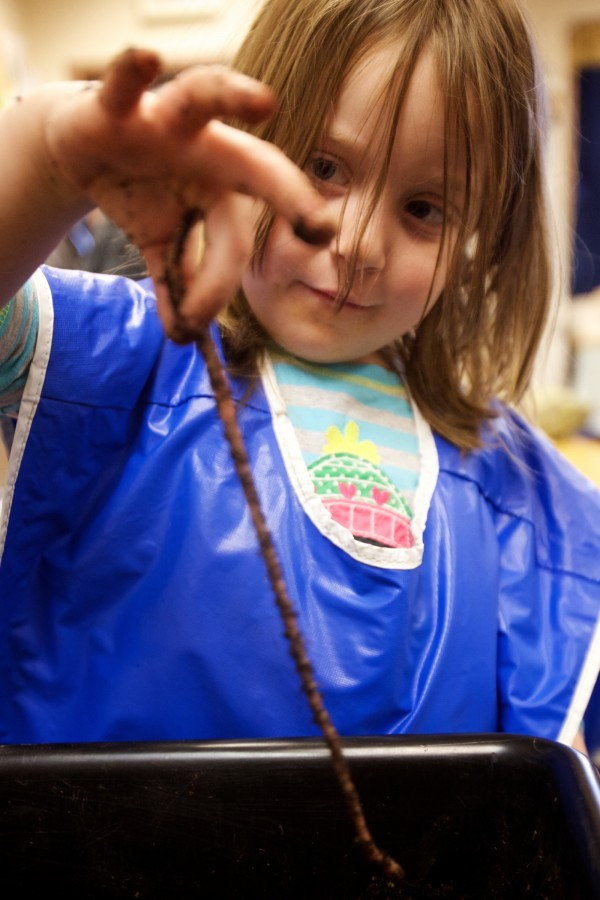 Emily learns about worms first hand at the Head Start program in Bath Tuesday.
