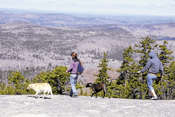 Two hikers walk their dogs across Sunset Ledge on Bald Mountain in Dedham on April 17. Although the blustery northwest wind barreled across the mountaintop, the clear atmosphere provided views extending more than 100 miles to the north and the west.