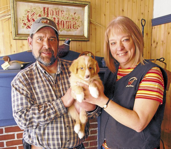 Owners of Wassookeag Retrievers in Dixmont, David and Susan Robichaud hold an 8-week-old female Nova Scotia duck tolling retriever puppy destined for a home in Connecticut. The Robichauds breed &quottollers&quot and Labrador retrievers and train and board dogs at their business.
