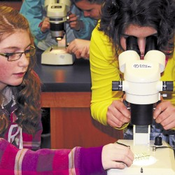 Girl Scouts explore engineering choices at UMaine