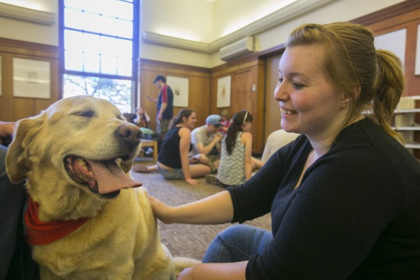University of Maine senior Kaleigh Knights pets Atticus, a therapy dog from Renaissance dogs, in Fogler Library on UMaine's campus on Wednesday. The dogs were available to students who needed a break and stress relief ahead of final exams.