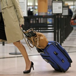 Airlines collected $3.4B in bag fees in 2010