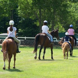 4R Animal Shelter Kids and Horses Camp