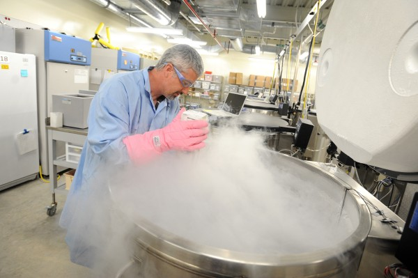 Kurt Christiansen, BioRepository Supervisor at The Jackson Laboratory, opens one of the liquid nitrogen refrigerators in the Bio Bank where 7,000 different strains of mice (sperm and embryos) are stored using cryopreservation.