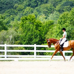 Equestrian contest therapy for riders