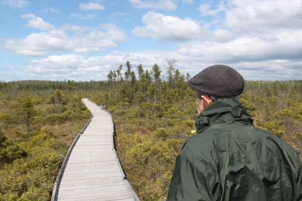 Ron Davis, founder of the Orono Bog Boardwalk, walks along the boardwalk he planned and built with more than 100 volunteers in 2002 and 2003 on May 14, 2013.