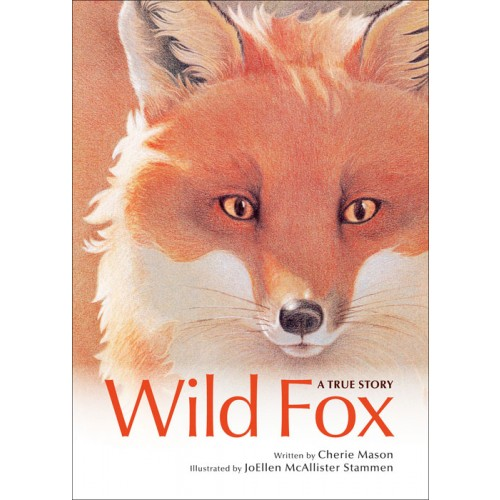 Front cover of &quotWild Fox: A True Story&quot written by Cherie Mason and illustrated by Jo Ellen McAllister Stammen