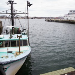 Warming waters threaten fish stocks off New England, report says