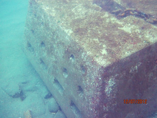Image of the Habitat Mooring System take by Dr. Rhian Waller as it sits on the bottom of Seal Harbor.