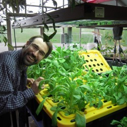 Expansion of the hydroponics greenhouse is one of the many future projects that excite Luke Shorty, executive director and academic dean of the Maine School of Science and Mathematics in Limestone. Shorty is also an alumnus of  MSSM.