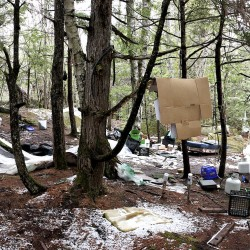 'North Pond Hermit' encampment dismantled