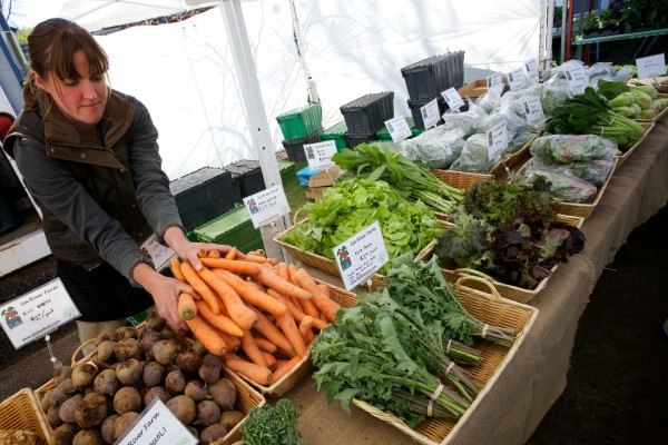 Gabrielle Gosselin arranges some carrots at her Six Rivers Farm stand at the Brunswick Farmers Market Tuesday morning. She said she doesn't get much call for it, but she'd like to accept SNAP for her produce.