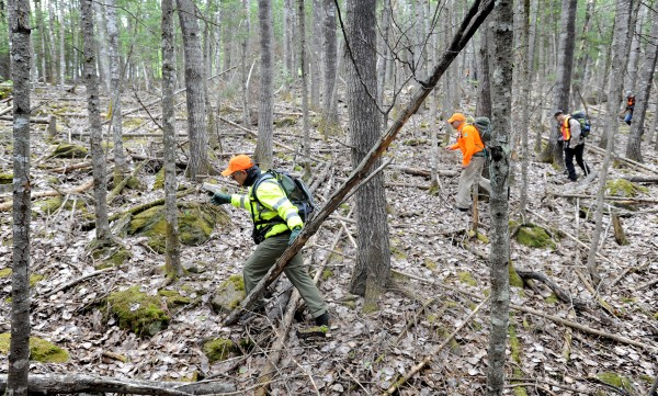 Volunteers from search and rescue organizations and Maine wardens search through Glenburn woods along Hudson Road for clues about missing 15-year-old Nichole Cable.