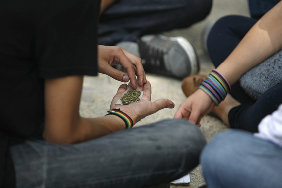 A man holds shredded marijuana in the palm of his hand during a 4/20 rally to demand the legalization of marijuana outside the Senate building in Mexico City April 20, 2012. Marijuana enthusiasts across the world gather every year on April 20 for an international celebration-cum-protest for marijuana legalization.