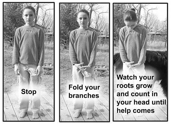 This photo illustration shows children (and adults) how to avoid being bitten if approached by a strange dog. The &quotBe A Tree&quot program will be offered through Green Acres Kennel Shop in May.