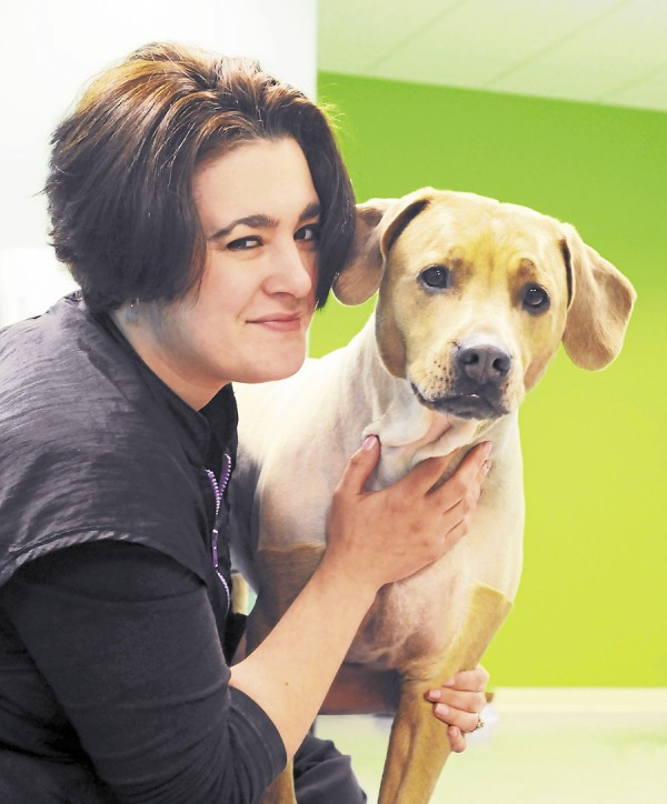 Sheri Therrien, owner of Fetch Grooming in Brewer, said her dog, Fetch, is &quotpure innocence&quot and was adopted from the Bangor Humane Society.