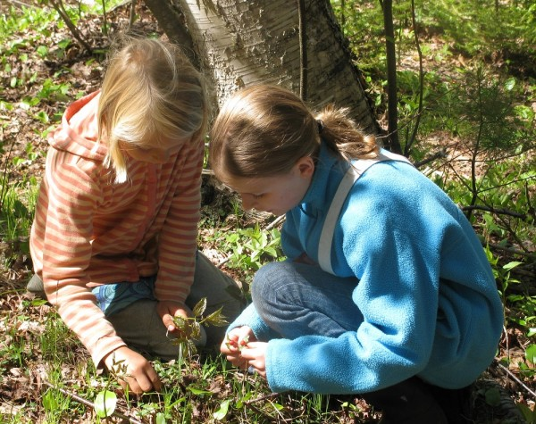 Foraging can be interesting and fun for the whole family.
