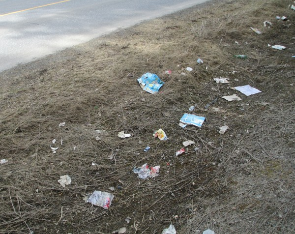 Trash along the Parsons Road has become a common sight in Presque Isle. Some residents are blaming the city's pay as you throw program.