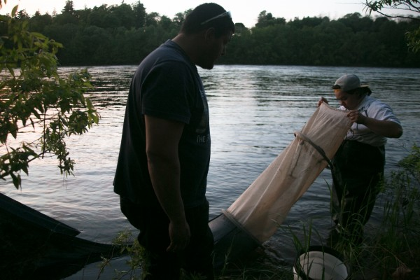 Glenn Bernard (right) of Presque Isle and Sam Sockabasin of Princeton check Bernard's nets for eels to empty them for night fishing in the Penobscot River near Brewer on Thursday, May 30, 2013.