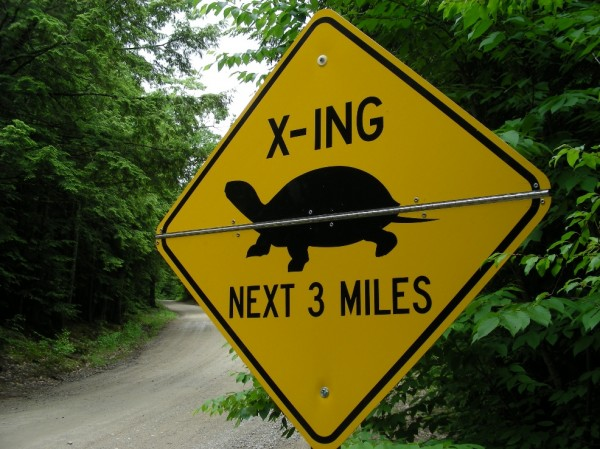 A new turtle crossing sign erected by state biologists warns motorists of endangered turtles in the roadway during spring 2013 in southern York County.